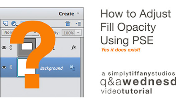 How to Adjust Fill Opacity using Adobe Photoshop Elements